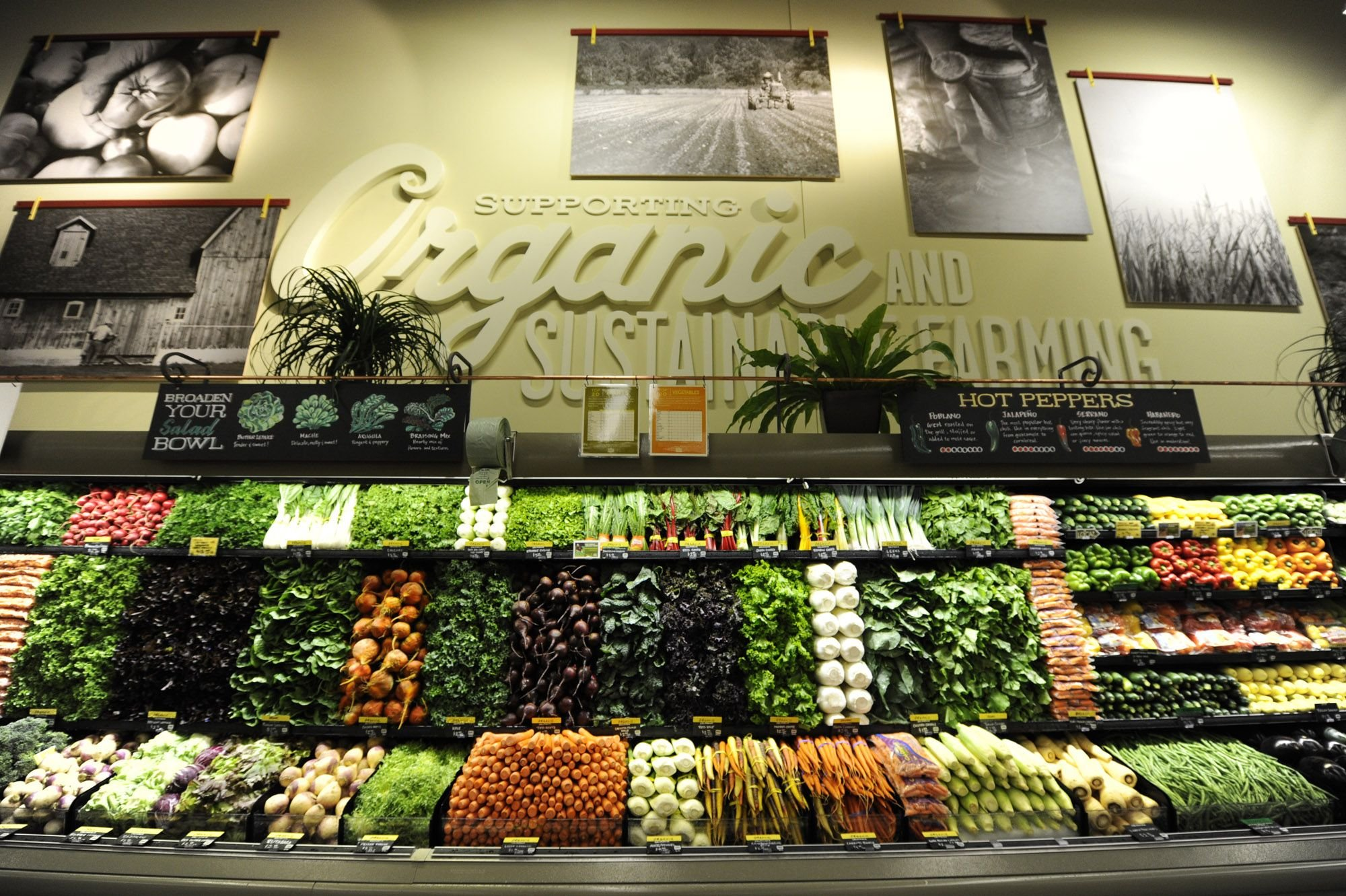 Why Shop At Whole Foods Market