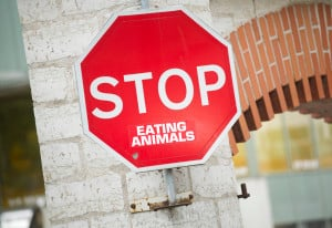 "A sign that is fixed to a brick wall reads, ""STOP EATING ANIMALS."""