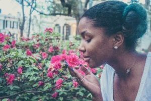 A person leans in to smell some bright pink flowers.